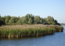 Lauwersmeer - Lytshuis Zilver