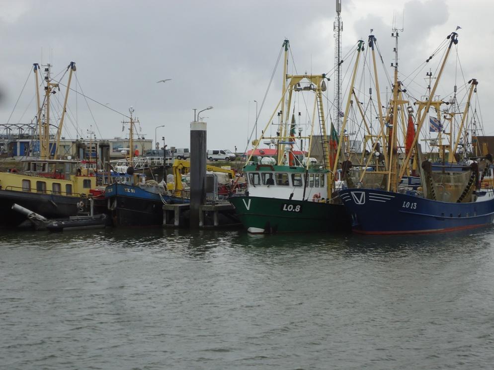 Vissersschepen op Lauwersoog