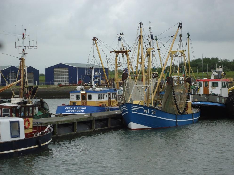 Visserijhaven Lauwersoog - Lytshuis Zilver