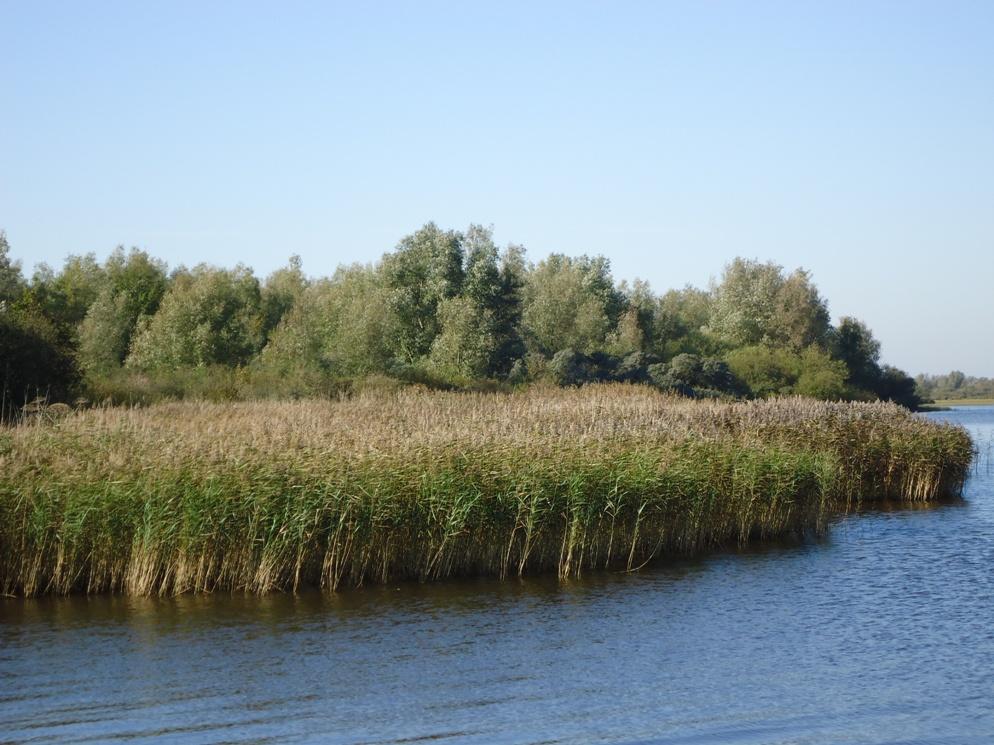 Nationaal park Lauwersmeer- Lytshuis Zilver